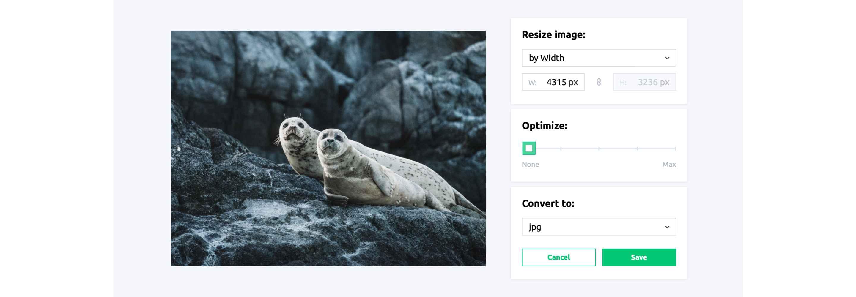 optimize-your-images-for-the-web-resizingapp